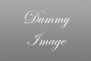 tl_yaml/images/dummy_300.png